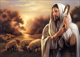 Our Divine Shepherd