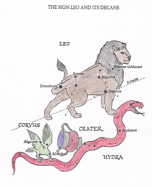 Zodiac 13- Leo